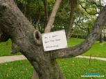 AB KI BAAR… GROW MORE TREES. #BRINGTHECHANGE